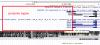 Human hg38 chr12 6532594 6536448 UCSC Genome Browser v394.png